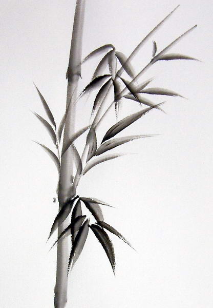 Bamboo Art Design : Pinterest the world s catalog of ideas